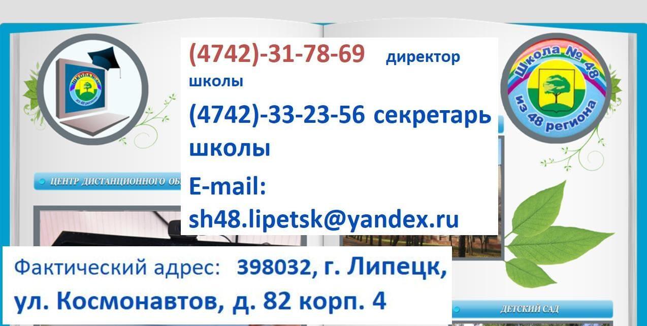 Вход в schools48.ru через госуслуги