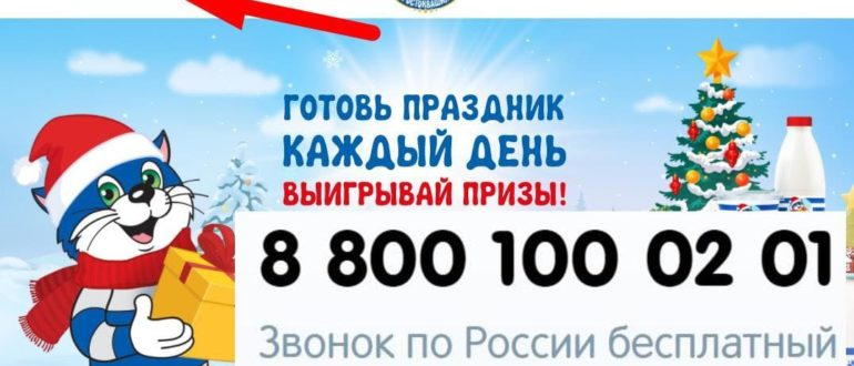 ЛК Акция «Простоквашино»