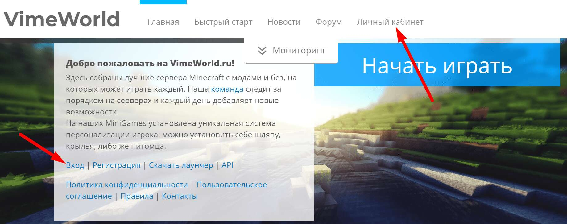 "Сайт сервера ""VimeWorld"""