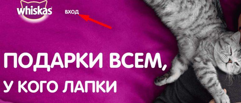 Ссылка на сайт акции «День Кошек»