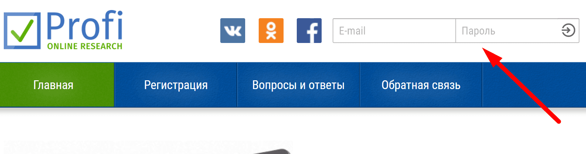 Ссылка на сайт онлайн опросника «Profi Online Research»