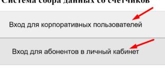 Ссылка на сайт системы «snt spb»