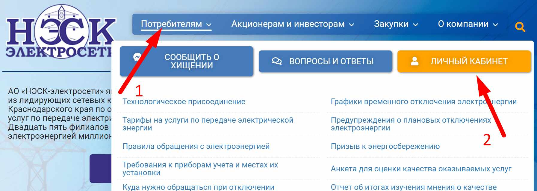 Официальный сайт компании АО «НЭСК-электросети»