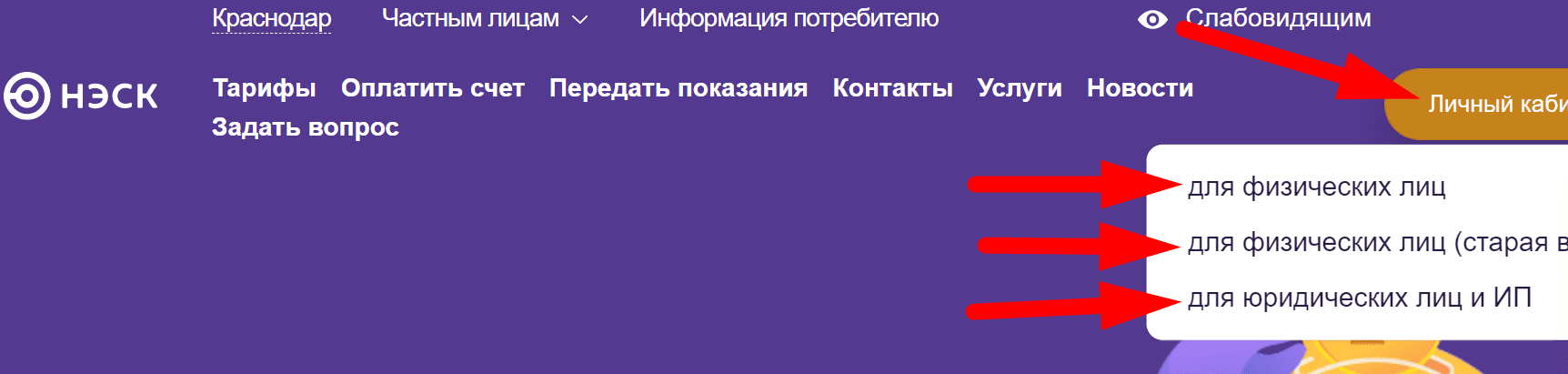 Ссылка на сайт энергосбытовой компании АО «НЭСК»