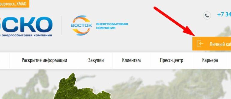 Ссылка на официальный сайт энергосбытовой ООО «НЭСКО»